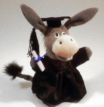 Graduation-Donkey