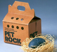 Pet Rock trendy
