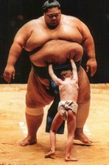 Size-does-matter funny sumo wrestlers