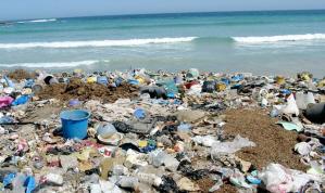 Garbage on beach gargabe in garbage out