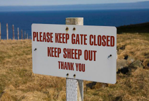 No sheep allowed sign