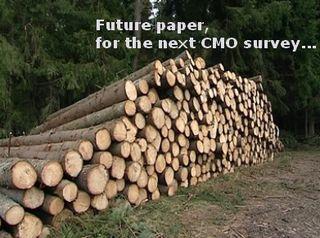 Piles-of-cut-logs