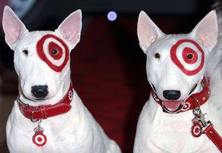 Target bullseye dog