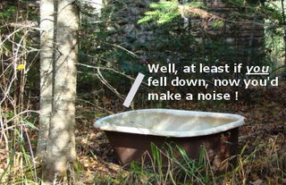 Abandoned bathtub in the woods